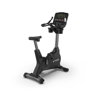 TRUE Fitness 400 Upright Bike