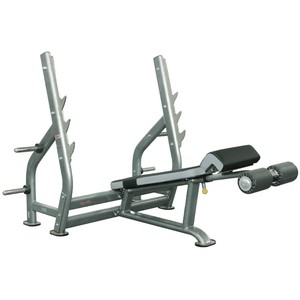 Healthstream Ultimate Decline Bench Press