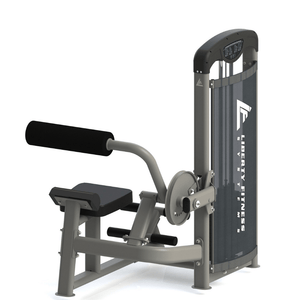 Liberty Fitness Atlantic Series Abdominal / Back Extension Dual Function