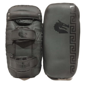 Morgan B2 Bomber Thai Pads