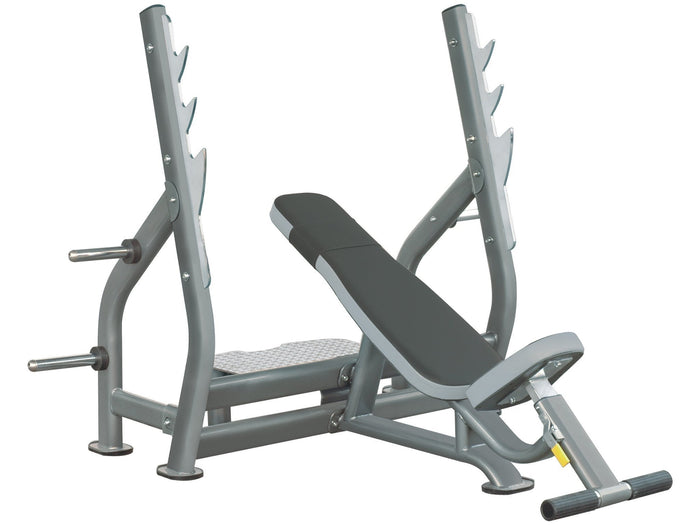 Healthstream Ultimate Incline Press Bench