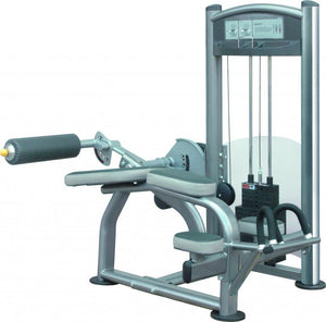 Healthstream Ultimate V Bench/Leg Curl