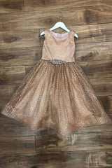 Glitter & Rhinestone Dress Dusty Rose