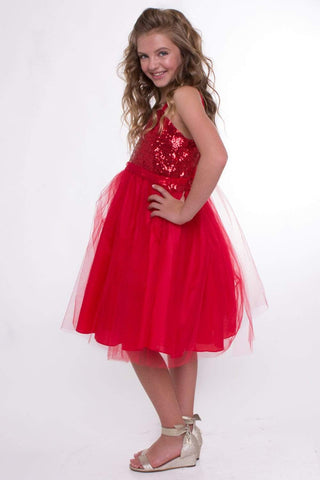Sequin Top Dress With Tulle Skirt