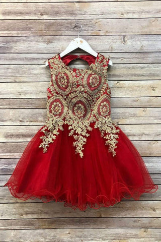 Stunning Beaded Knee length Dress