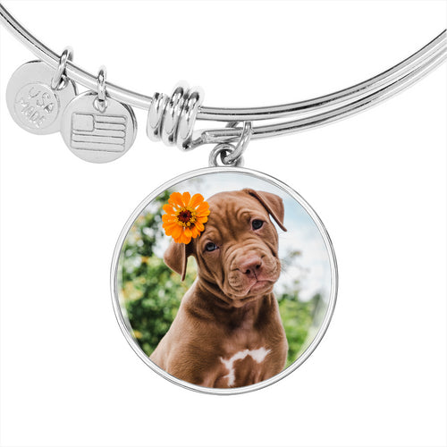 pitbullbangle