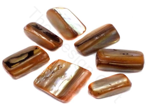 Brown Rainbow Shell Beads