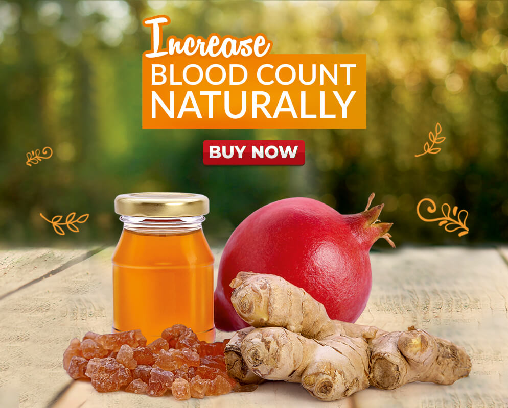 Nature to Market - HBZEN Increase Blood Count