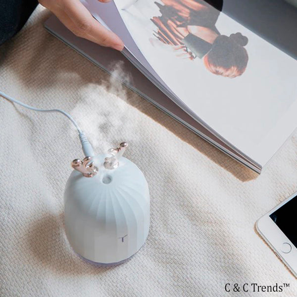 Cactus design Air Humidifier with LED lamp