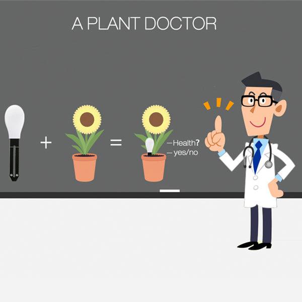 Your New Plant Pot Doctor