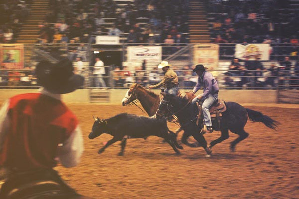 Cowboys in a rodeo show