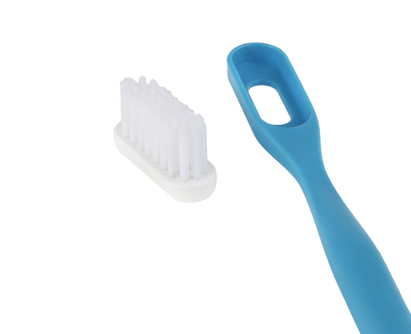 Replaceable heads for toothbrush