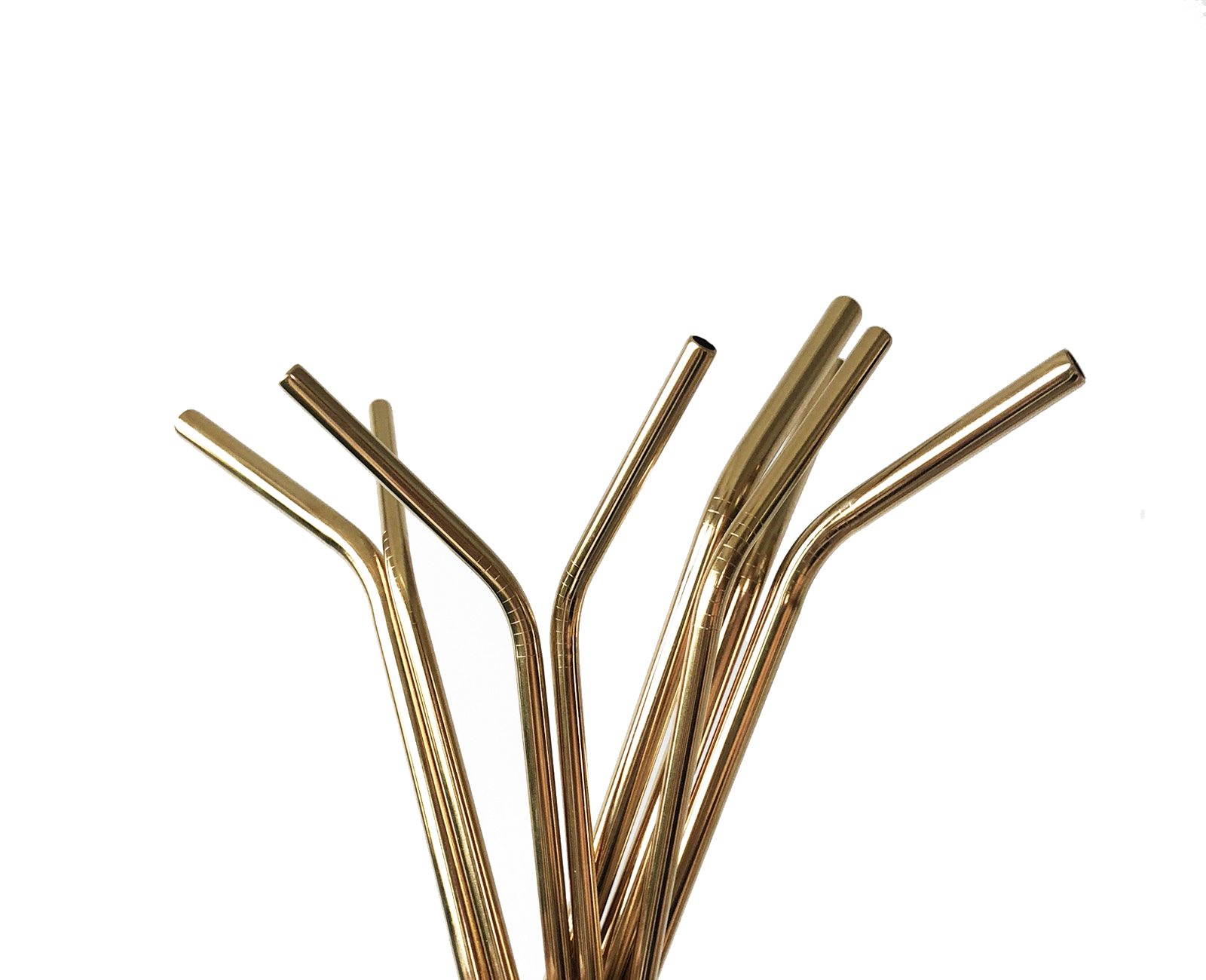 party kit including 4 stainless steel straws and 1 straw cleaner