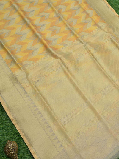 Shades Of Yellow Color Zari Border Pure Tissue Net Banarasi Saree - Sacred Weaves