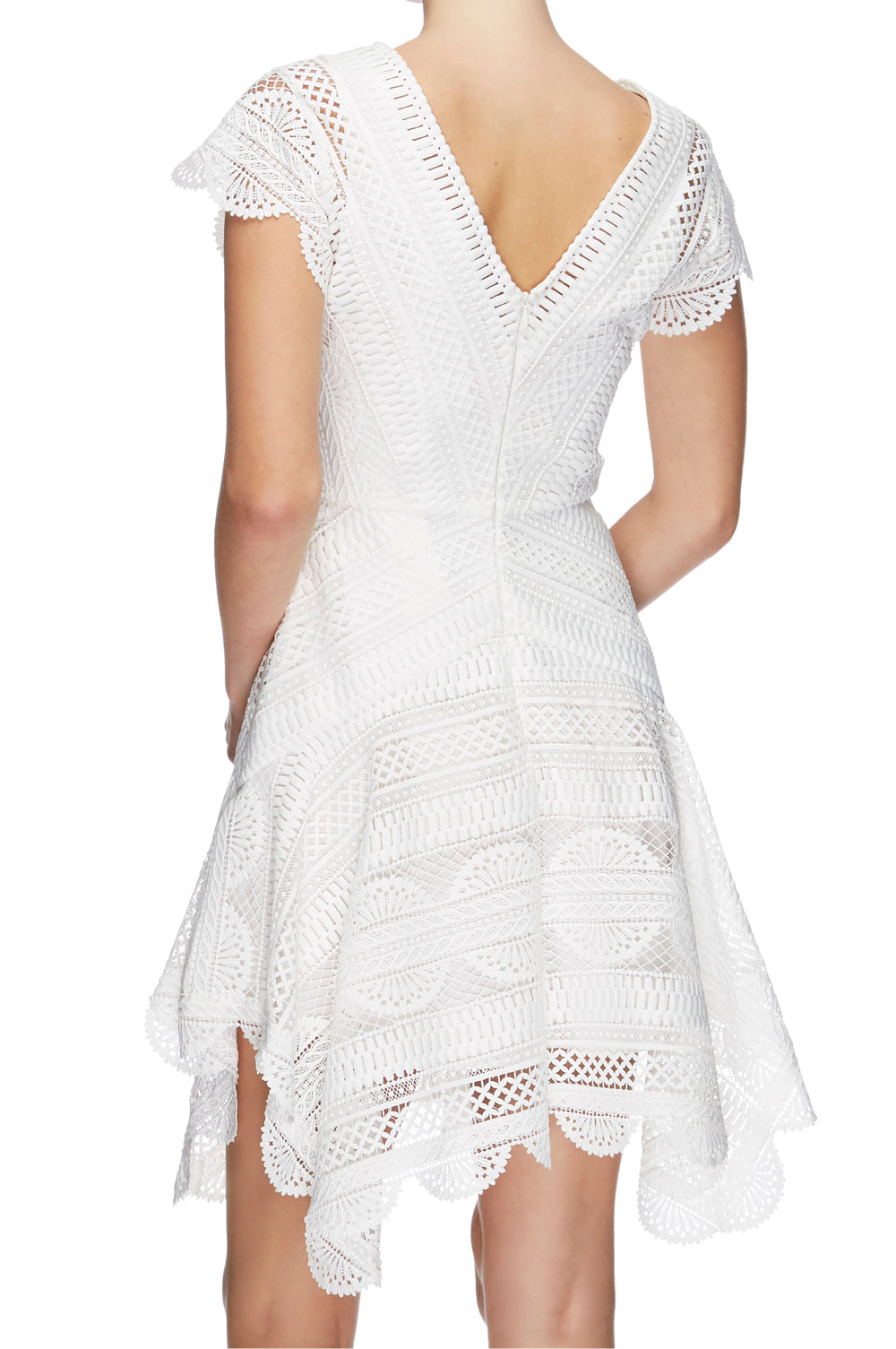 Ode Lace Mini Dress