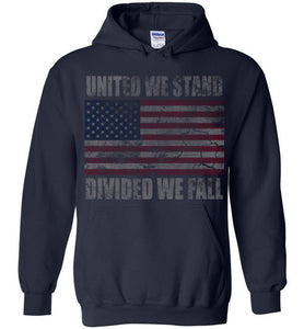 America United We Stand Divided We Fall