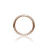 "5/16"" plain clicker ring 