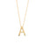 Necklace 00A |  14K Yellow Gold