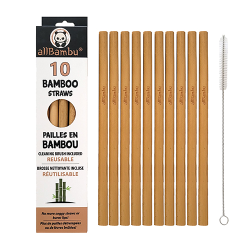 Bamboo Straws - Pack of 10