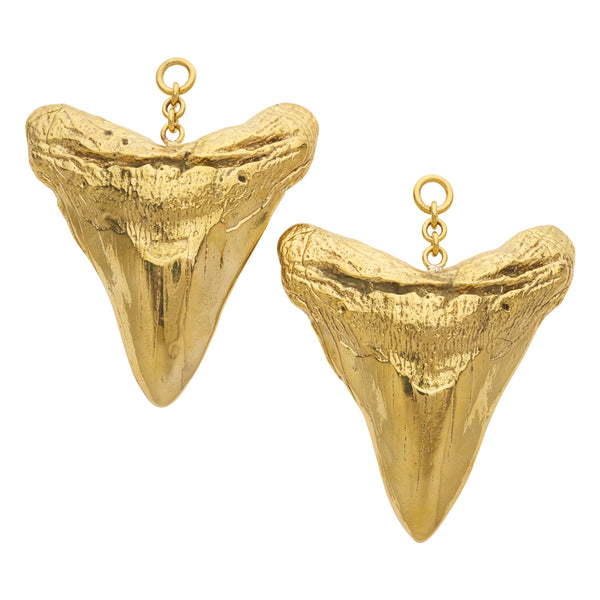 Large Shark Tooth Weights