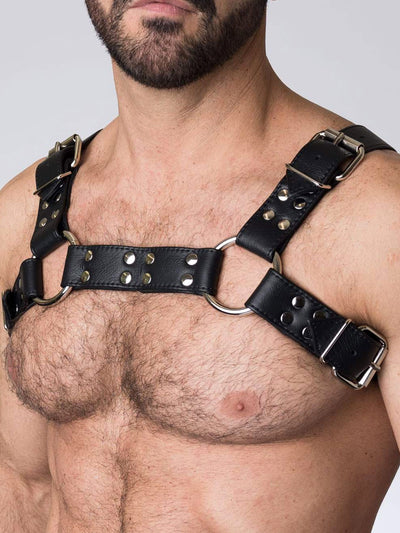 BUCKLE BULLDOG HARNESS
