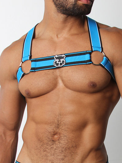 CELLBLOCK13 KENNEL CLUB SCOUT HARNESS