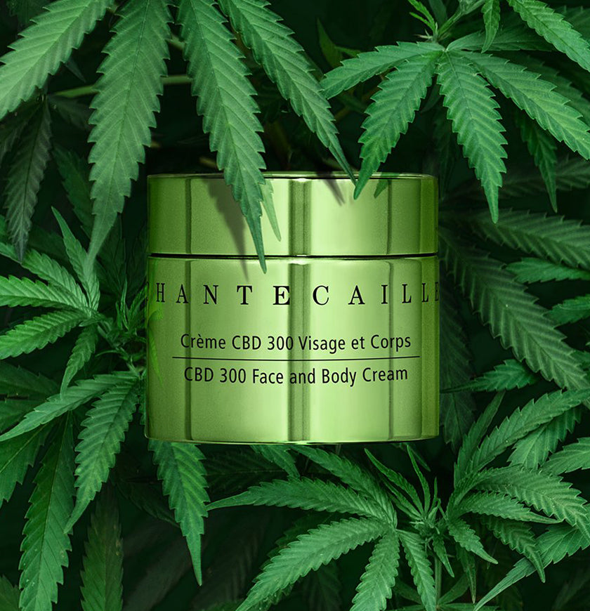 CBD 300 Face and Body Cream