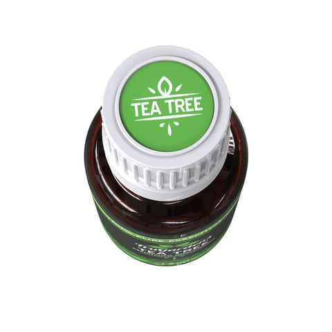 Tea Tree Essential Oil-Free-Sample