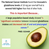 The Mighty Avocado... Good Source of Glutathione and Decreased Cancer Risk?
