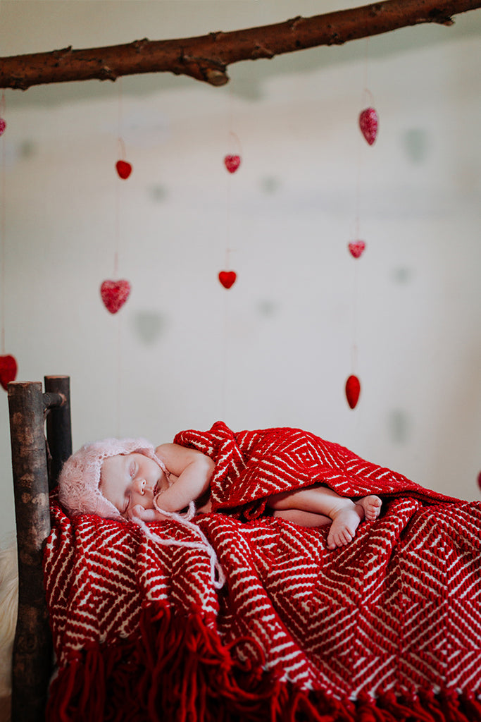 Valentine's Photo Backdrop Ideas