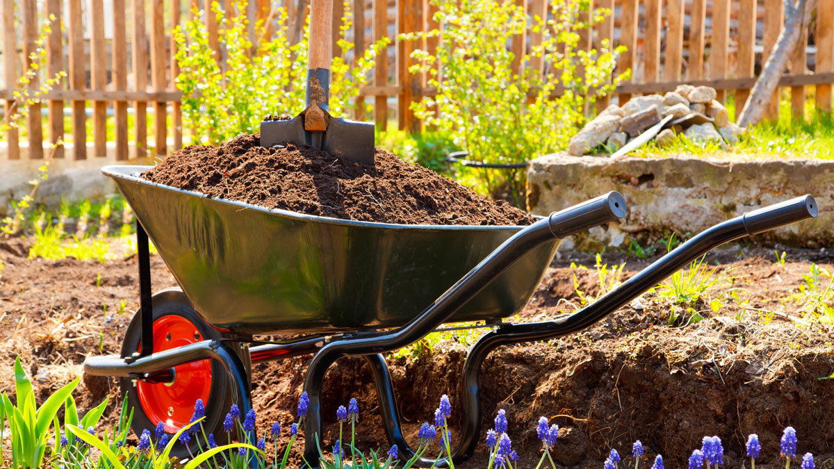 Compost Mulch