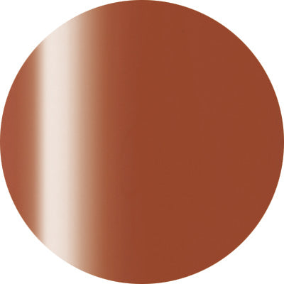 Presto Color Gel #238 Terracotta [4g] [Jar] [While Supplies Last]