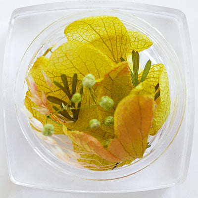 Nail Parfait Flower Yellow [NEW]