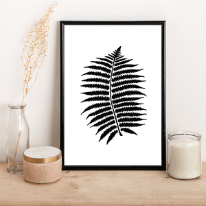 Black Fern - Alotta Style - Interior Prints and Posters