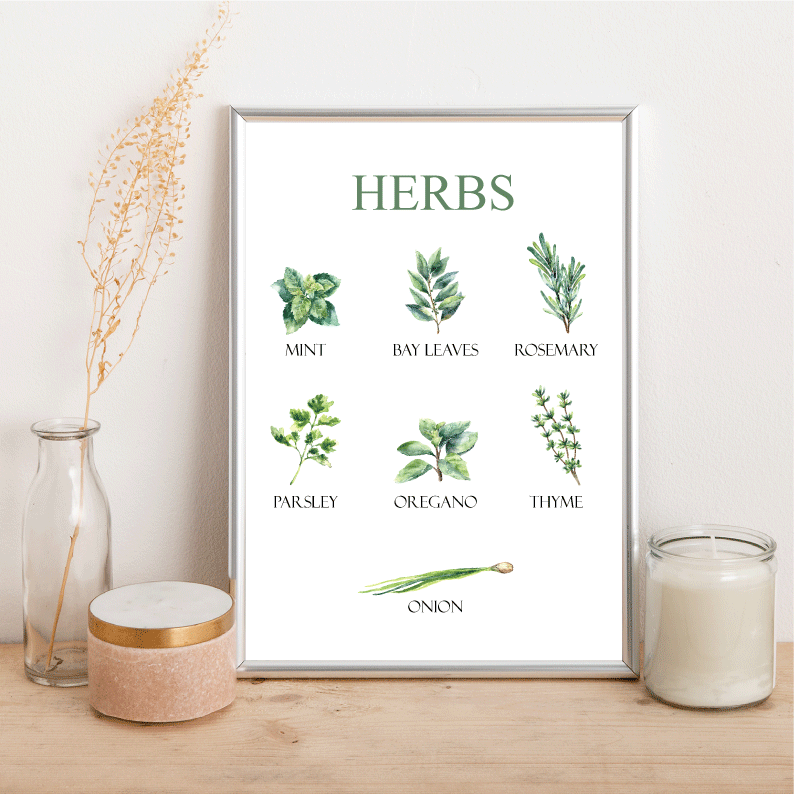Herbs - Alotta Style - Interior Prints and Posters