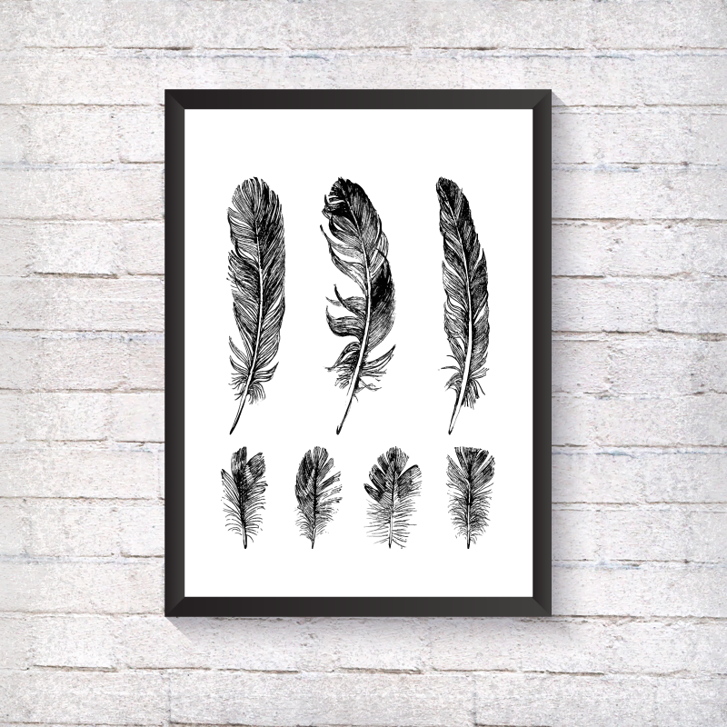 Row of feathers - Alotta Style - Interior Prints and Posters