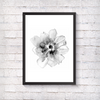 Grey Flower - Alotta Style - Interior Prints and Posters