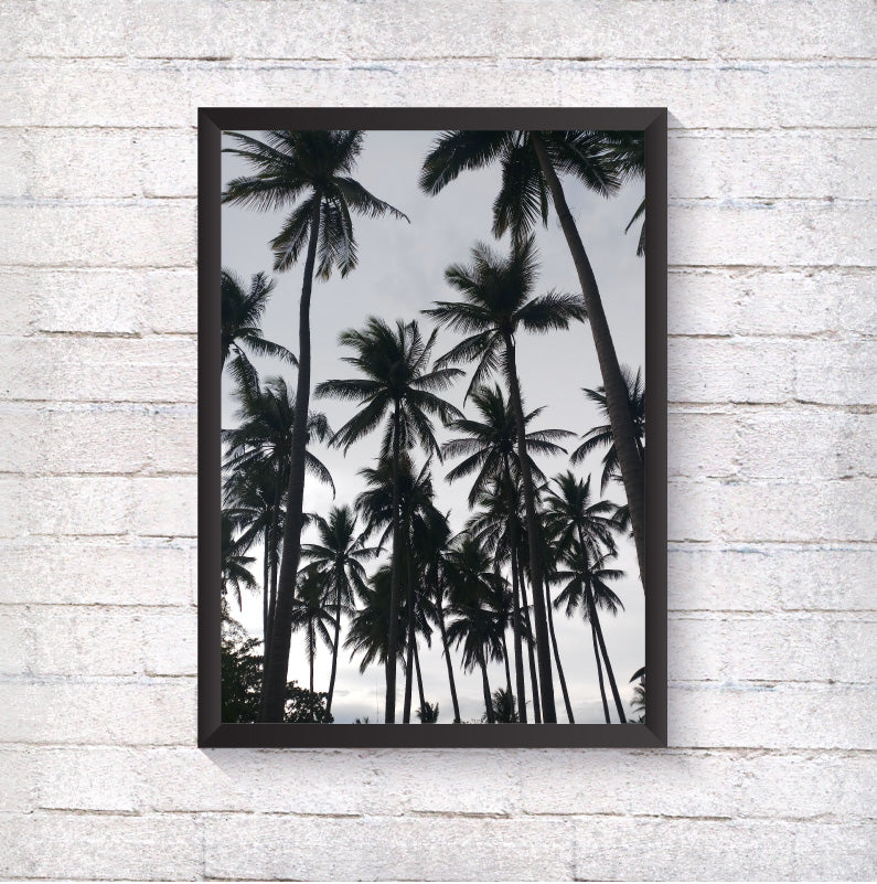 Palm Trees - Alotta Style - Interior Prints and Posters