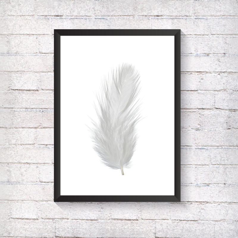 White Feather - Alotta Style - Interior Prints and Posters