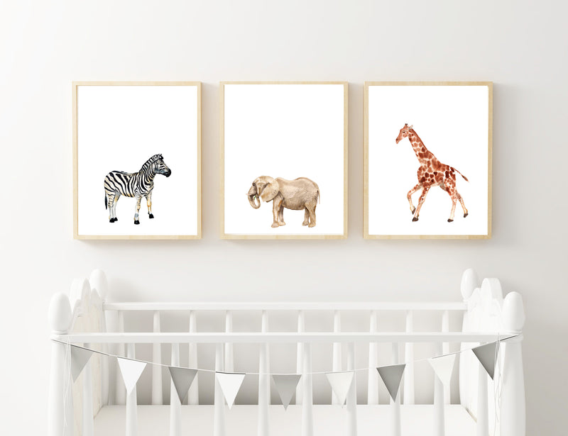 Zebra, Elephant & Giraffe - Alotta Style - Interior Prints and Posters
