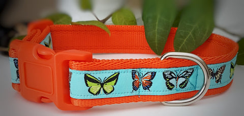 Butterflies on Sky Blue Dog Collars & Leads