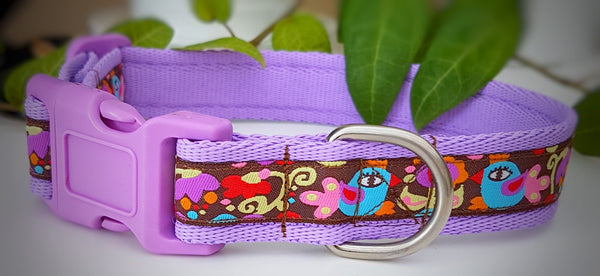 Abstract Birds & Flowers Dog Collars & Leads