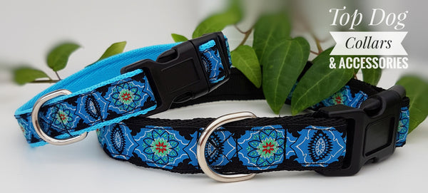 Blue Mandala Collars & Leads