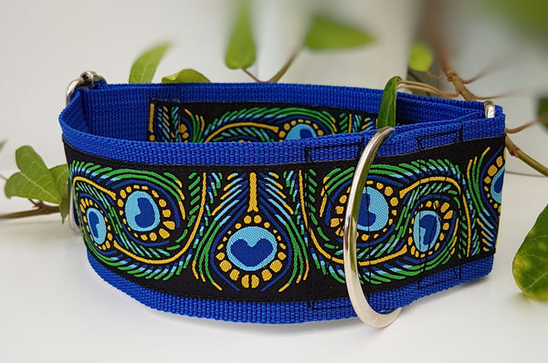 "Peacock 2"" Wide Collars"