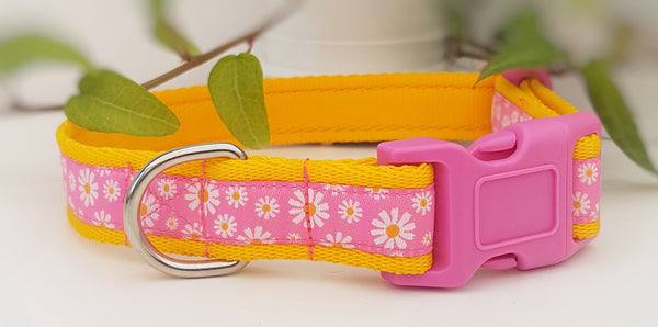 Pink Daisy woven ribbon Collars & Leads