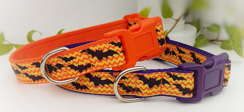 Bats Dog Collars & Leads