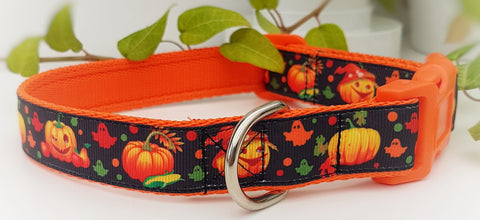 Pumpkins Dog Collar / Lead