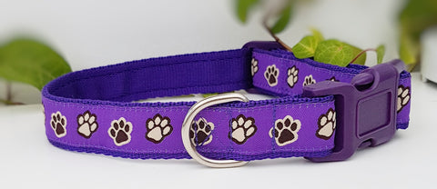 Purple Paw Prints Dog Collars & Leads