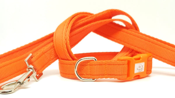 Orange Plain Webbing Collars & Leads