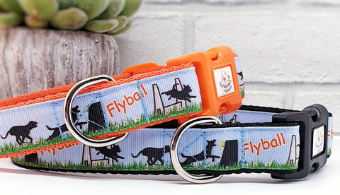Flyball Dog Collars & Leads